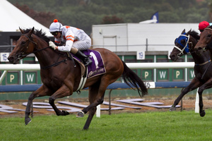 Fix could have the opportunity to add the NZ Derby to her three wins at Ellerslie. Photo / Natalie Slade