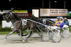 I'm Themightyquinn wins the 2011 interdominion Final in Auckland. Photo / NZPA