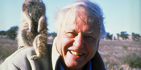 David Attenborough in The Life of Mammals. Photo/supplied