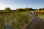 Boardwalks create wonderful riding past wetlands in Rotorua's Thermal by Bike ride, Te Ara Ahi. Photo / Supplied