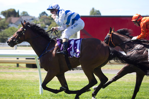 Punters were left reeling after Valbuena won the Avondale Guineas at Ellerslie yesterday. Photo / Natalie Slade