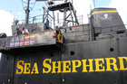 Sea Shepherd Conservation Society anti-whaling ship Steve Irwin. Photo / File / Chris Ormond