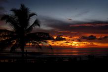 Phuket. Photo / File photo