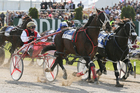 Ricky May drives Terror To Love (left) to NZ Trotting Cup victory at Addington in November. Photo / Getty Images