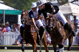 Pedro Harrison of Bayleys up against Nachi du Plessis of Veuve Clicquot in the final. Photo / Sarah Ivey