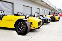 A gleaming row of Frasers line up for a race day. Photo / Phil Hanson