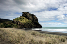 The bodies of two men were found on the northern side of Lion Rock at Piha Beach during a shoreline search.Photo / Doug Sherring