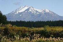 View of Mt Ruapehu from the north side of the railway bridge which crosses the Whangaehu River at Tangiwai. Photo / Sarah Ivey