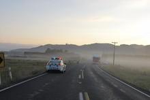 A view of the crash site on the Hauraki Plains. Photo / Supplied