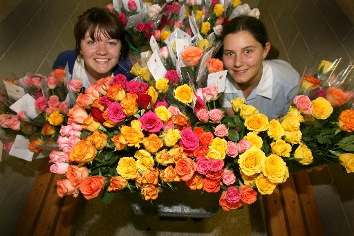 SAY IT WITH FLOWERS: Wairarapa College students Anya Charnock (left), and Rachel Anderson, both 15, prepare different coloured roses for the Valentine's Day fundraiser.
