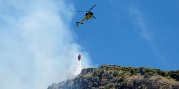 Emergency services battle a fire at Karekare Beach on the West coast of Auckland. Photo / Shalema Wanden-Hannay