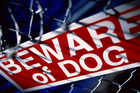 Dogs can be classified as menacing or as dangerous. Photo/Thinkstock