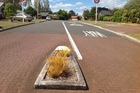 NO SEAL: Residents of Caulfield Place don't want their road resealed.