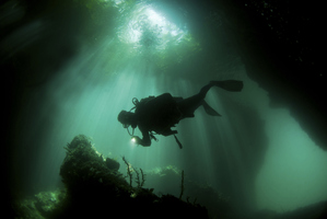 What if there was a new kind of suit divers could wear underwater? Photo / Thinkstock