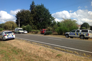 The scene in Murupara where a 5-year-old girl was seriously attacked by a dog.