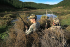 Fish & Game are taking action in an effort to arrest the nationwide decline in wild duck numbers.