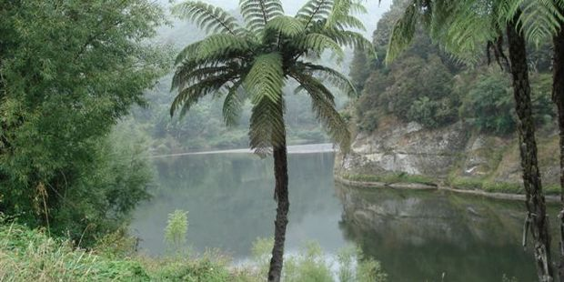 A man has reportedly gone missing in the Whanganui River. File photo / APN