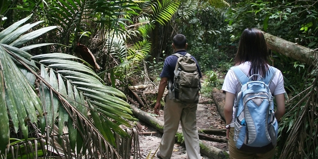 Jungle treks make an exciting adventure, or you can just relax at the beach.