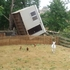 Tree topples taking chicken house with it. Photo /Fiona Woodcock
