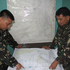 Filipino government troopers look at a map as they continue the search for the missing plane of Malaysian Airlines flight. Photo / AP