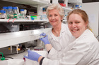 Dr Judy O'Brien, left, has been honoured for mentoring young women scientists, including Dr Kate Angel. Photo /  University of Auckland