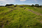Otuataua Stonefields Historical Reserve. File photo / APN