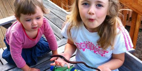 ittle Emily (20 months) and Gracie (5) Bonasich with Wormzilla. Photo/Ian Bonasich