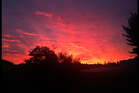 The sunrise in Howick on Friday. Photo / Melissa Aubroeck