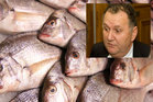 Shane Jones asked why recreational fishing limits had been cut when there appeared to be surplus fish in the commercial supply chain. Photo / APN
