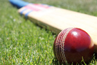 Brendon McCullum had little batting support from his teammates yesterday. Photo/Thinkstock