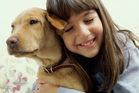 The results showed that all five scents elicited a similar response in parts of the dogs' brains involved in detecting smells. Photo / Thinkstock
