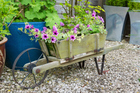 Planting in movable containers can be very convenient - use anything on hand. Photo/Thinkstock