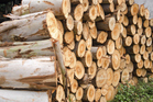 CHH has admitted its part in anti-competitive activity in which three big Auckland suppliers agreed to sell structural timber at a set price between Sept 2012 and March last year. Photo / Thinkstock