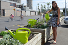 Emily Harris says you can grow food for the community in all sorts of unlikely places. Photo / Meg Liptrot