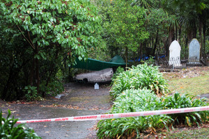 The scene of the sexual assault at the Symonds Street Cemetery Auckland. Photo / Doug Sherring