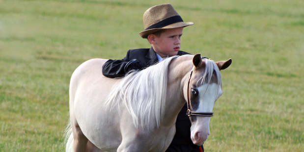 Lukas Atkins is a member of the Miniature Horses association and has great fun showing his miniature pony.