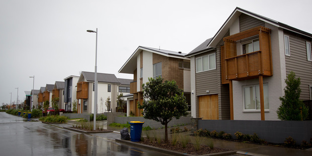Houses in Hobsonville Point, Auckland. Photo / Sarah Ivey