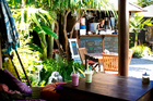 Just a few steps up from glorious Waihi Beach you can satisfy thirst, hunger and your need for shade at The Secret Garden. Photo / Babiche Martens