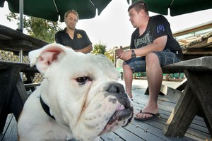 Hayden van Hooff (left) had psychic medium Jay Dobson sit down with his pet bulldog Caesar who was stolen then returned earlier in the month. Photo/Warren Buckland