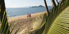 Queensland: All calm at Palm Cove