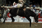 Kelly Timberman competes in the bareback riding competition. Photo / Getty Images
