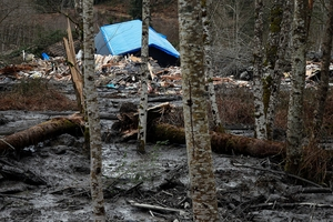 The mudslide destroyed several homes and blocked the Stillaguamish River in Washington state. Photo /AP