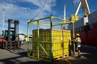 Zespri's first shipment of the year will head for Japan.Picture / Alan Gibson