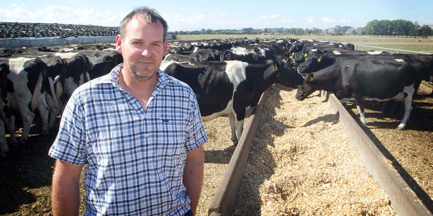 Mark Sing's Morrinsville farm has a 2000-tonne backup feed supply. Photo / Christine Cornege