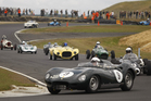 Cars race during the New Zealand Festival of Motor Racing event held at Hampton Downs. Photo / File