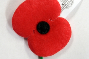 Ny said the poppy represented a food contamination risk, but it was acceptable for staff to wear it for a few days around Poppy Day.