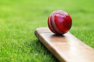 Auckland Cricket chief executive Auckland Cricket is not impressed at the possibility of its cricket pitch at Eden Park being replaced with a hotel. Photo / Thinkstock