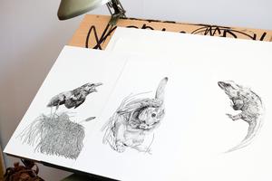 Drawing desk set-up. Photo / Babiche Martens