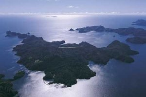 Kaikoura Island. File photo / NZ Herald