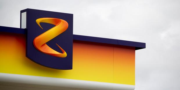 Z Energy. Photo / Greg Bowker
